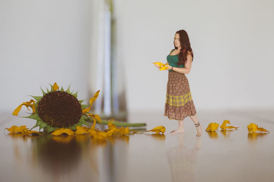 Day Destruction Fairy Fantasy Flower Grief Home Interior Indoors  Long Hair Miniature Mourning One Person One Woman Only Petals Pixie Sad Skirt Sunflower Tiny Woman Worry