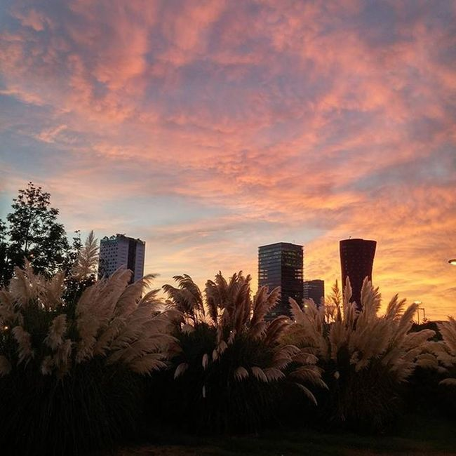 Sunrise Amanecer Leverdesoleil Auringonnousu Hospitaletdellobregat Best_sky_archive Fotofanatics_sky_ TPSextreme @thephotosociety Sunsunsun_hereitcomes