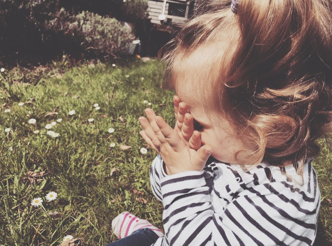 ❤️ Mygirl♥ Youandme Mamasgirl Hallo Ich Liebe Dich ! Daughter Love Familie Beautiful Sommertime Photography Nice Day Lalefo Daddy's Girl Daddyslittlegirl Cute♡ Toller Tag (: Fotography Family❤ Sun Beauty Summer Pretty Flowers Flower Photography