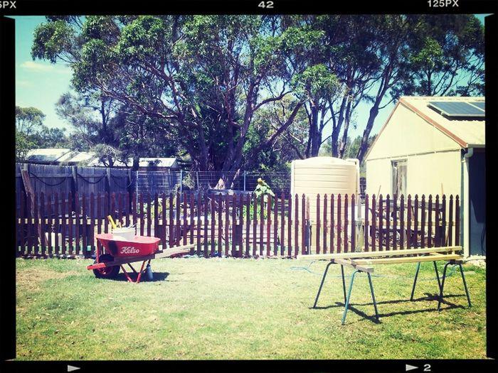Refurbished vege patch fence.