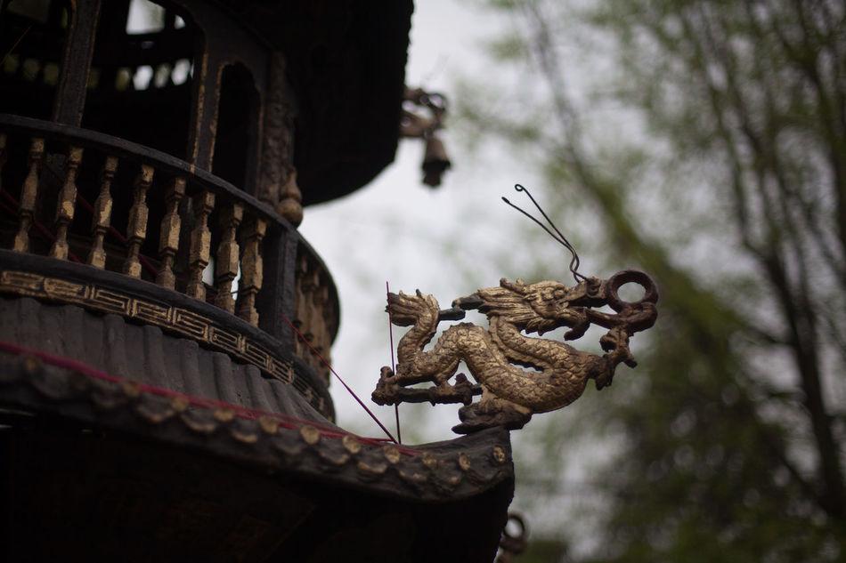 Beautiful stock photos of dragon, Animal Representation, Architecture, Art, Art And Craft