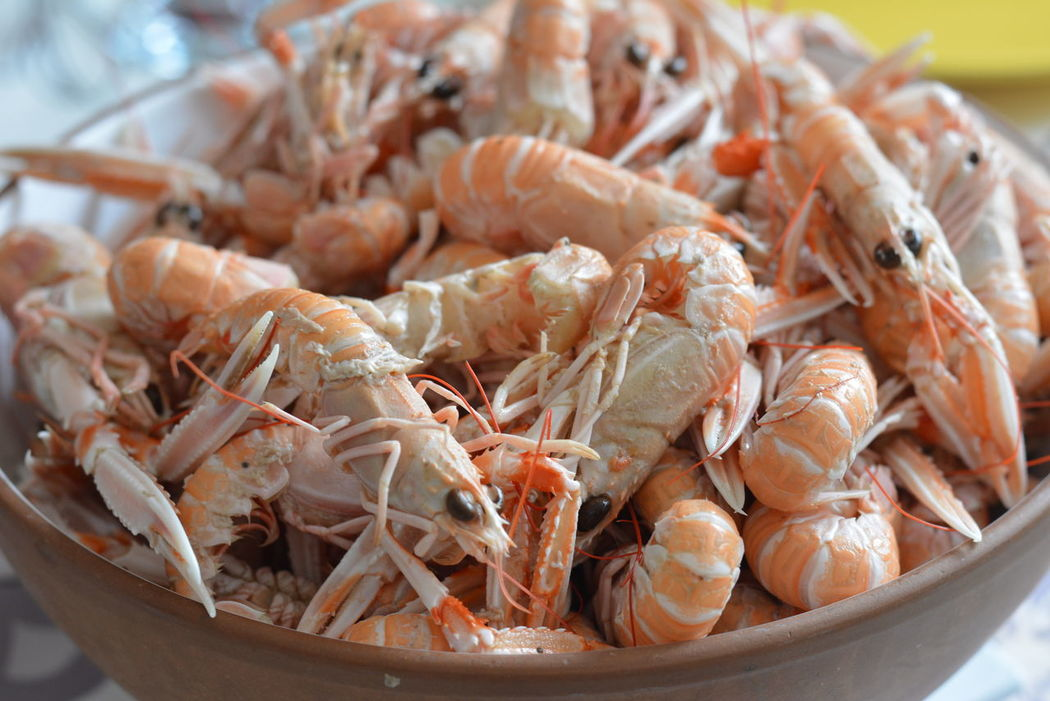 Bowl Of Food Bowl Of Seafood Close-up Crustacean Day Food Food And Drink Freshness Healthy Eating Krustentiere Langoustine Langoustines Langustine Norway Lobsters Prawn Prawns Seafood Norwegian Lobster Large Group Of Objects