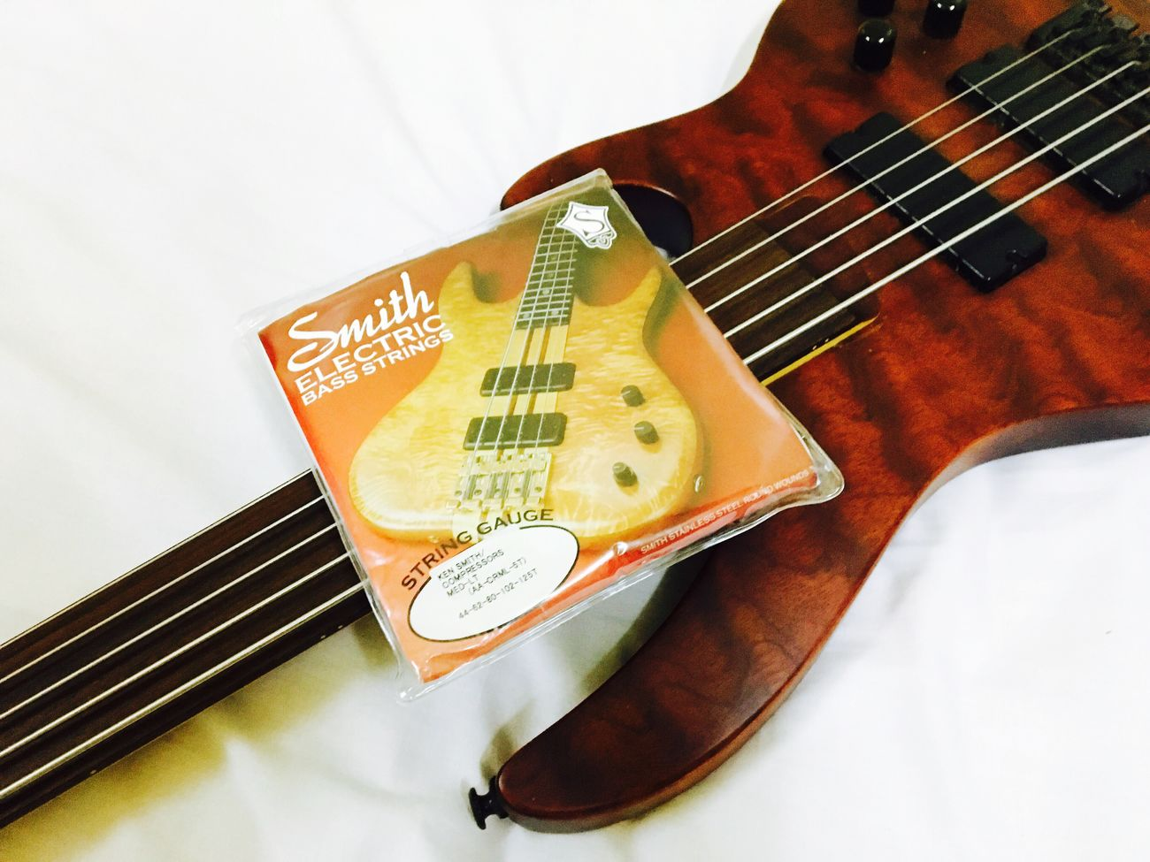 Brice Fretless Bass Guitar and Ken Smith Strings