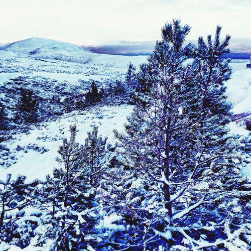 Cairngorm Snow Skiing