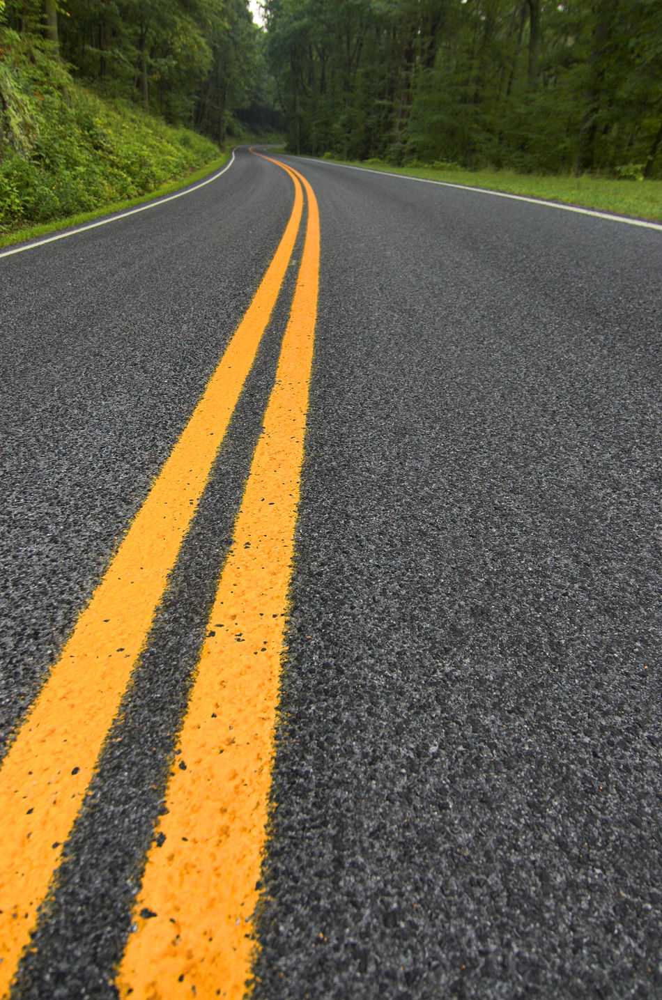 Traveling across Shenandoah and the Skyline Drive Asphalt Day Diminishing Perspective Dividing Line Double Yellow Line Driving Empty Empty Road Inspiration Inspirational LINE Long Orange Color Outdoors Road Road Road Marking Roadtrip Surface Level The Way Forward Tranquil Scene Transportation Vanishing Point Yellow