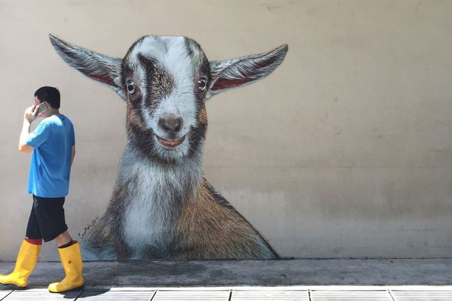 Eavesdropping goat in Singapore Mural Wall Art Baby Goat Graffiti Man Walking Man Rubber Boots Sunny Strideby Singapore