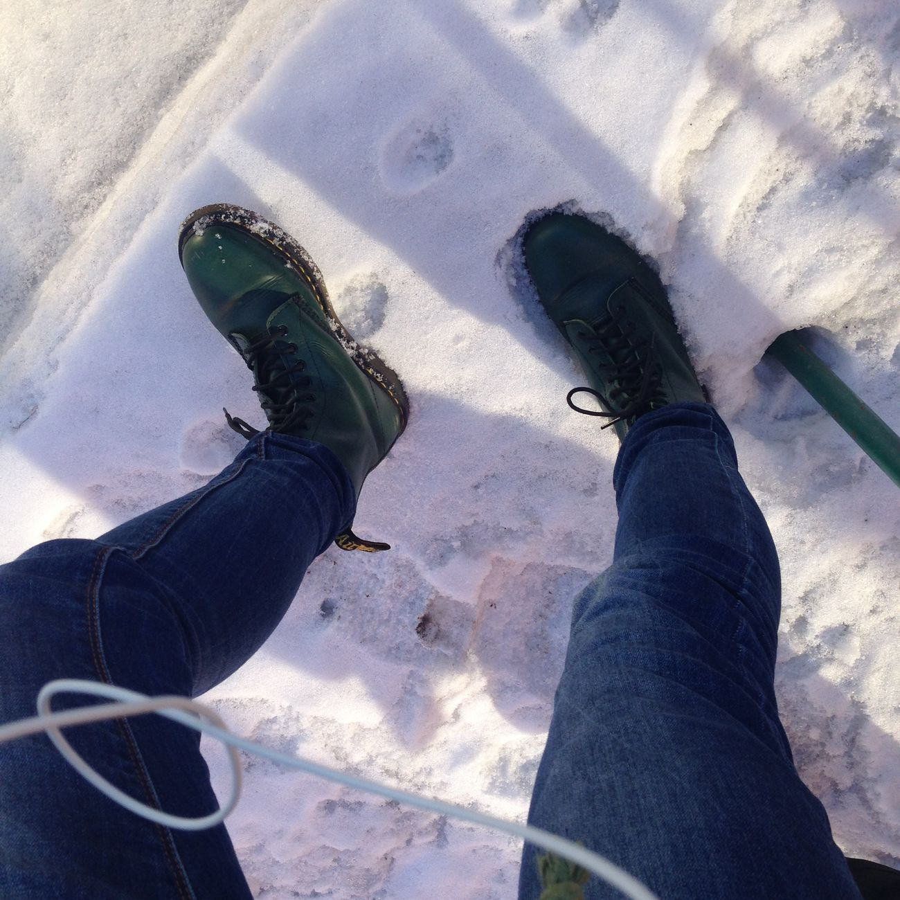 Almost Spring Drmartens Buster SO COLD Motherfucker ⛅️❄️🌞🐁