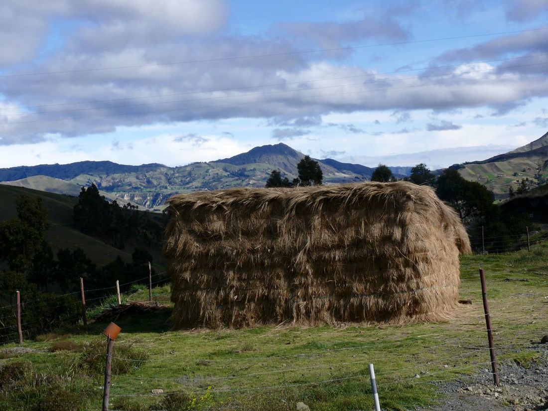 Ecuador backcountry. Our week at the Black Sheep Inn. Agriculture Beauty In Nature Cloud - Sky Ecuador Landscape  Grass Hay Stack Landscape Mountain Nature No People On The Road. Outdoors Rural Ecuador Scenics Tranquility