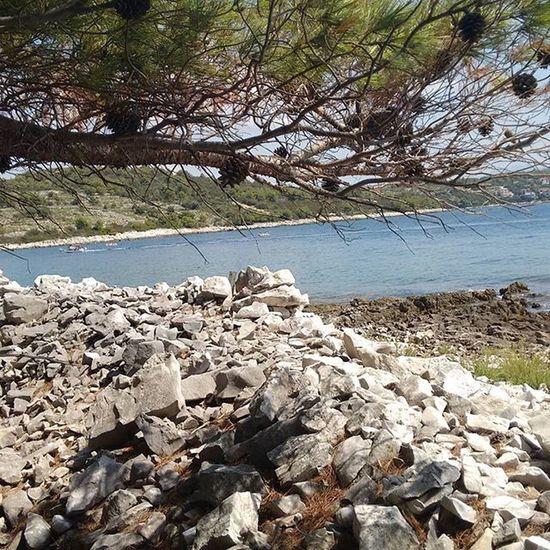 Keinfilter Ohnefilter Natur Meer Kroatien Kroatien2015 Urlaub Stein Strand Warm Wasser