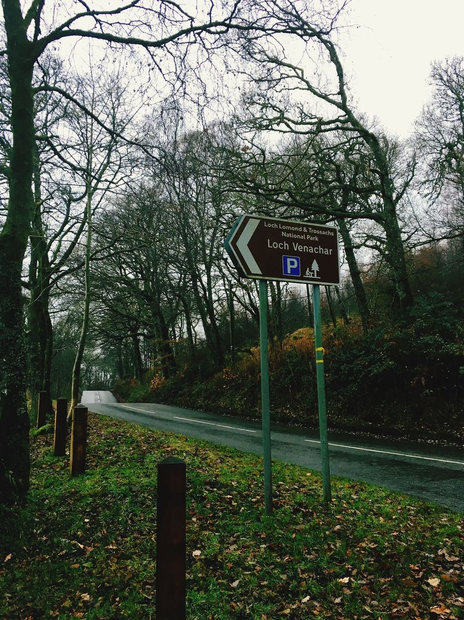 Nature Schottland Scotland LochLomond Loch Ness United Kingdom Tree Road Sign Beautiful Nature First Eyeem Photo