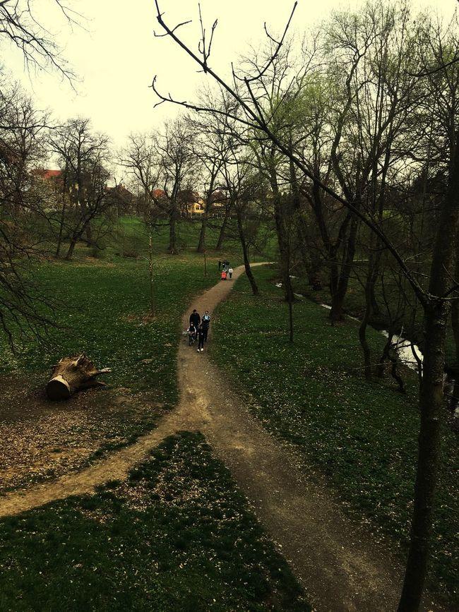 EyeEm Romania EyeEm Best Shots Urban Spring Fever Check This Out OpenEdit