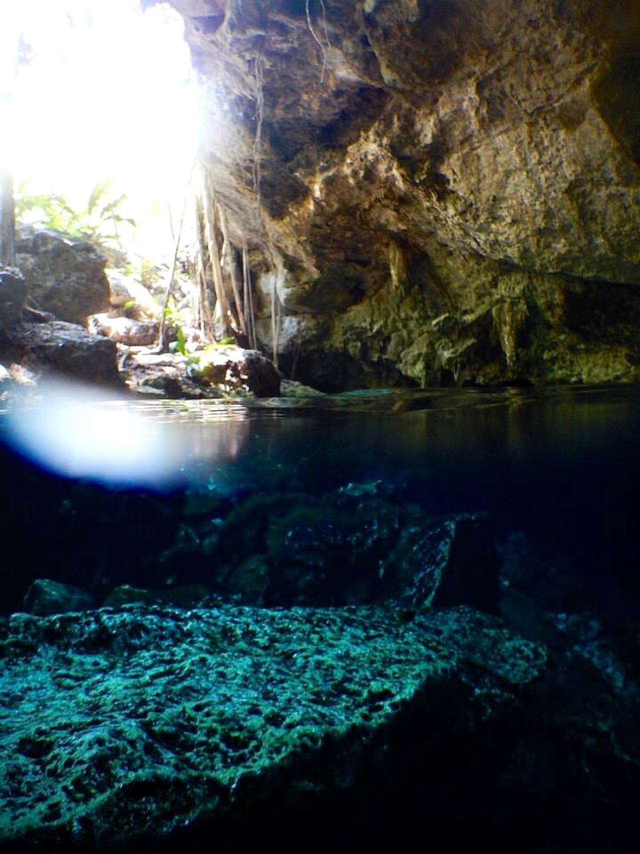 Underwater Photography Cenotes Water Cave Diving Scuba Diving