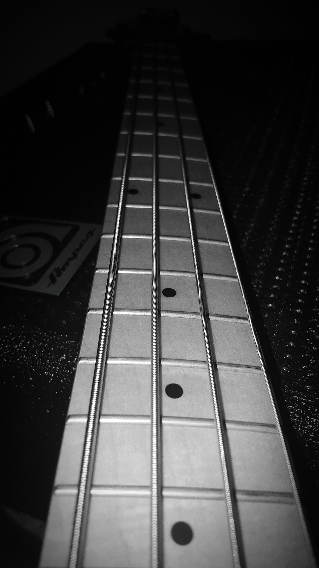 Taking Photos Enjoying Life Loveit POV Ibanez Coco's Bass Houseofguitars Hers Blackandwhite Coco'sPics Bass Guitar Amplifier Ampeg Bass Amplifier Bass Guitar EyeEm Best Shots - Black + White