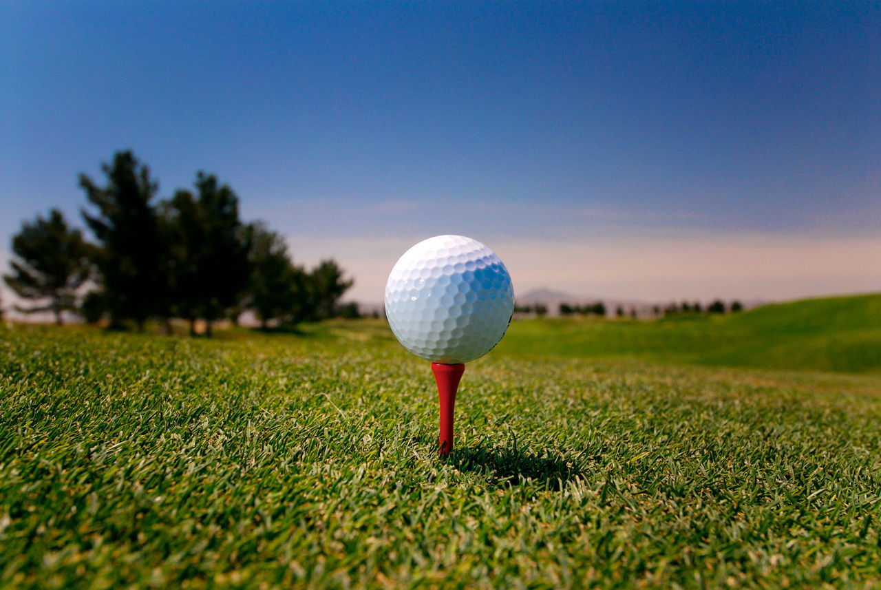 Beautiful stock photos of golf, Blue, Clear Sky, Close-Up, Day
