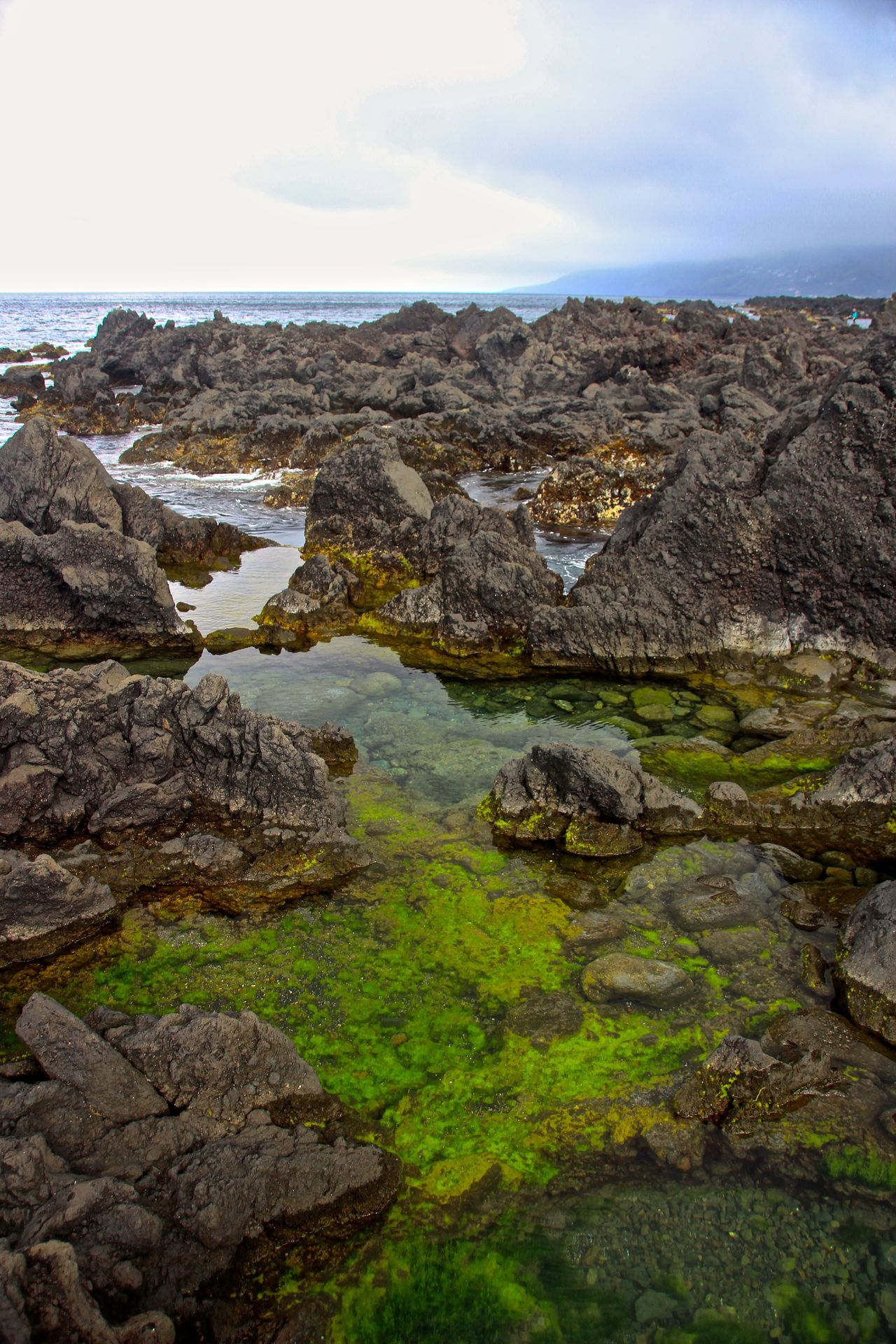 Azores Açores Beauty In Nature Coast Day Growth Landscape Nature No People Ocean Outdoors Pico Island Rock Pool Scenics Sea Sky São Roque Do Pico Tranquil Scene Tranquility Water