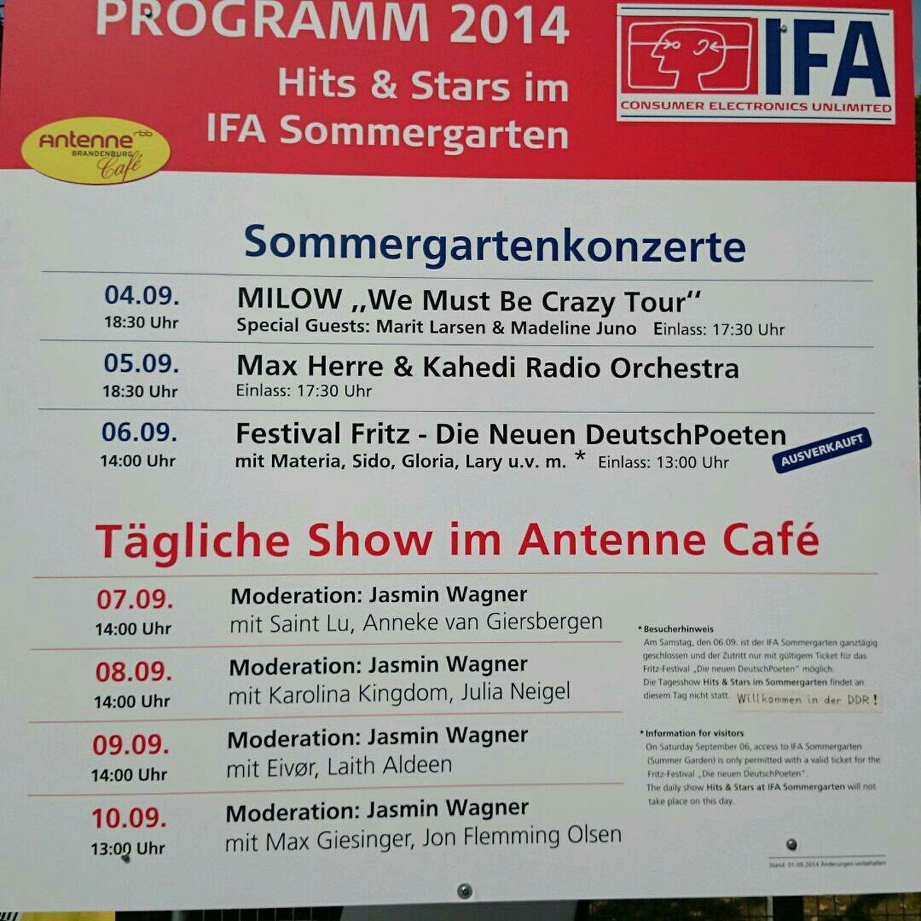 今年の夏フェス at IFAのプログラム。よく分からないけど。