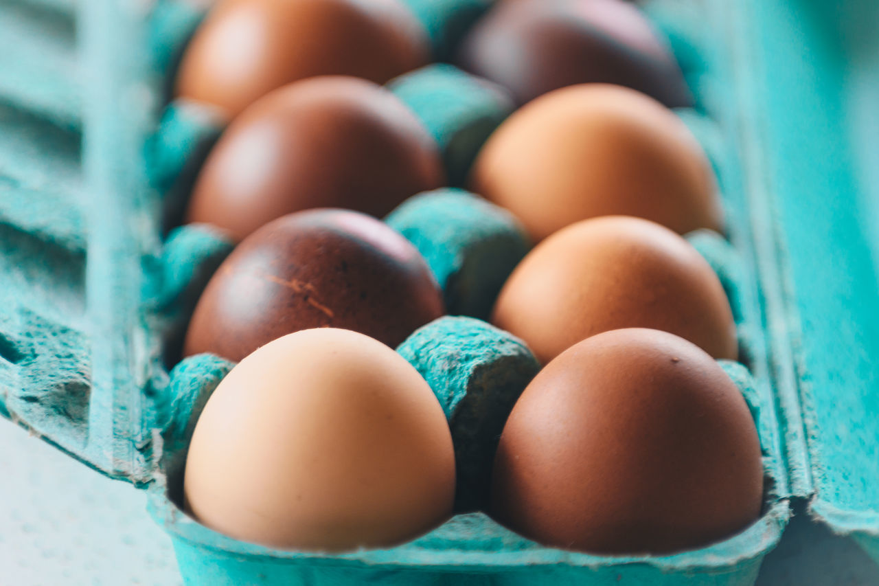 Eggs in pastel enviroment Abundance Blue Breakfast Close-up Day Directly Above Egg Carton Eggs Food Food And Drink Fresh Freshness Lines And Shapes No People Pastel Pastel Colors Studio Shot Symmetry Turquoise White Background