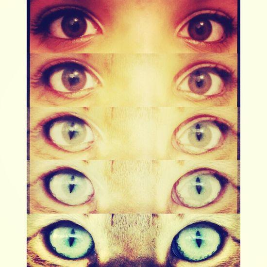 Eyes That's Me Enjoying Life Taking Photos me♥