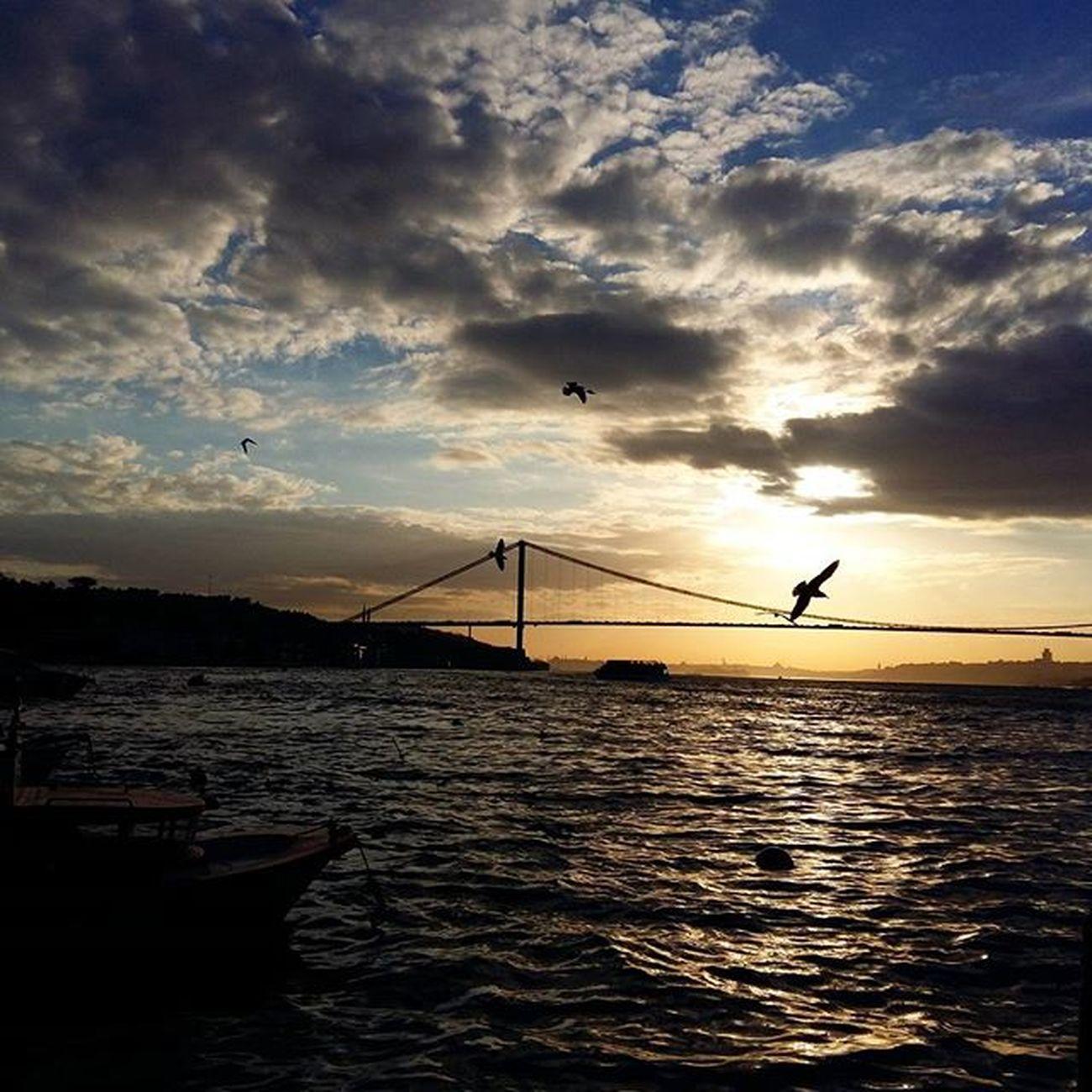 Istanbul Boğaz Bogazicikoprusu Cengelkoy Martılar Günbatımı Bulutlar Kışgüneşi