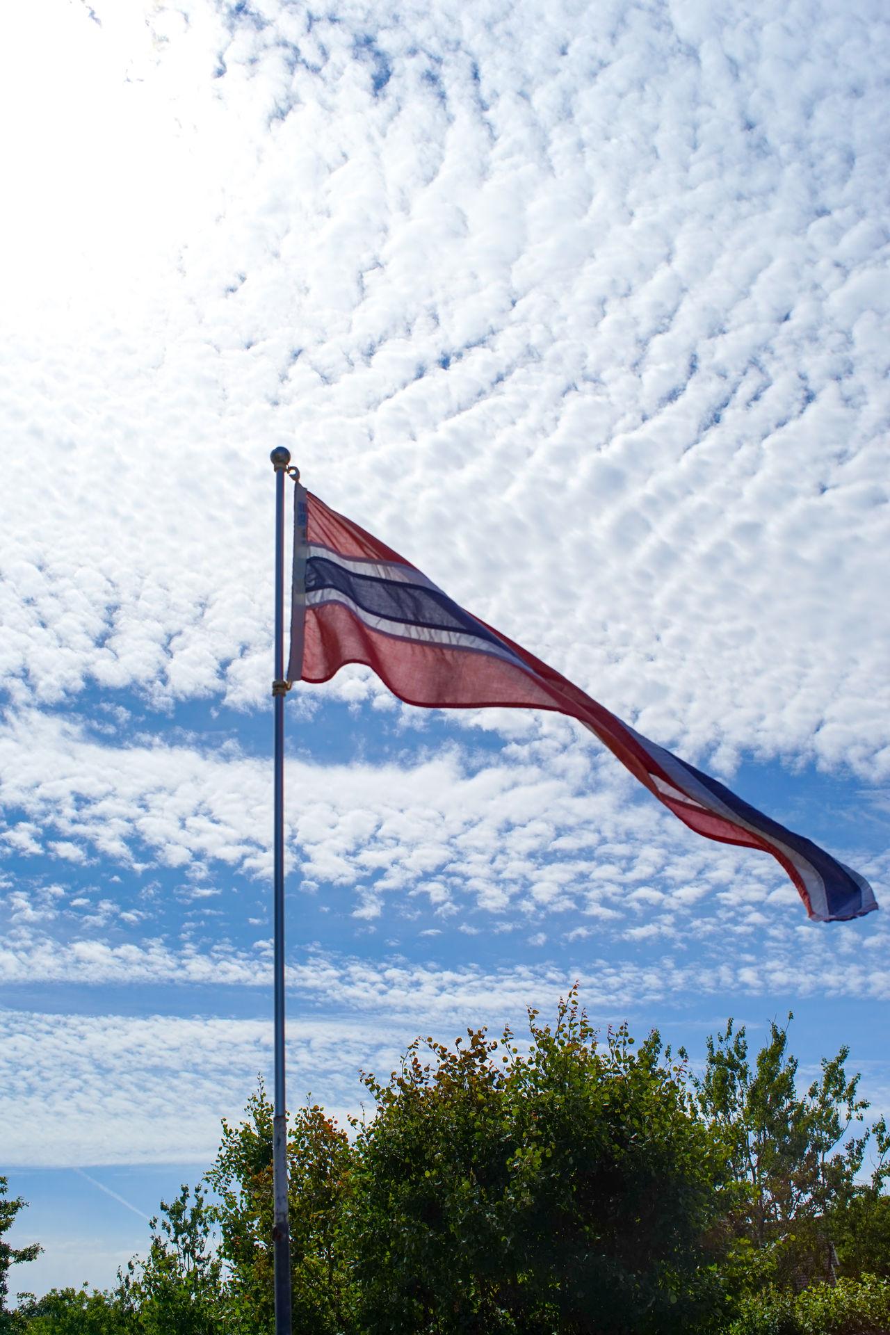 Summer :) Yes EyeEm is working again Norge Norway Cloud - Sky Day Flag Flag Pole Nature No People Norsk Norwegian Flag Outdoors Patriotism Pride Sky Tree Vimpel Wind