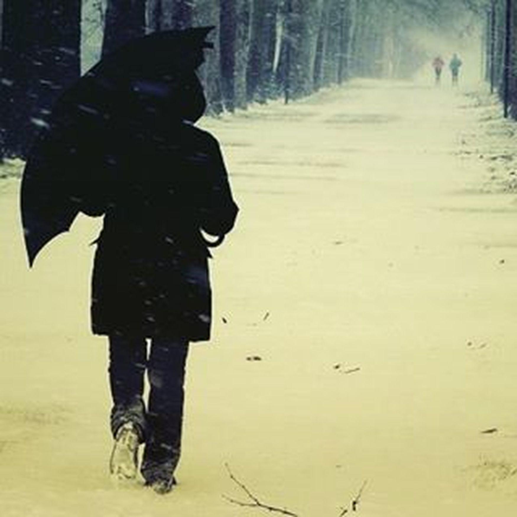 Dovremmo imparare dalla Neve a entrare nella Vita degli altri con quella grazia e quella capacità di stendere un Velo di bellezza sulle cose Passeggiaresottolaneve Ombrello Ragazzoconombrello Passeggiandoalparco Parcoruffini Torino Secondanevedimarzo Freddo Nevischio Natura