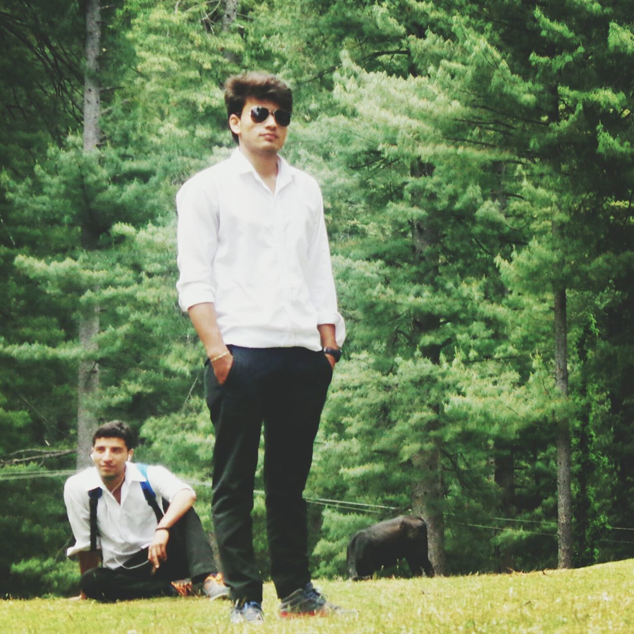 real people, full length, tree, casual clothing, sunglasses, front view, mammal, young adult, looking at camera, lifestyles, standing, forest, animal themes, nature, leisure activity, one animal, young women, portrait, domestic animals, outdoors, day, one person, growth, grass, smiling, happiness, boys, pets, friendship