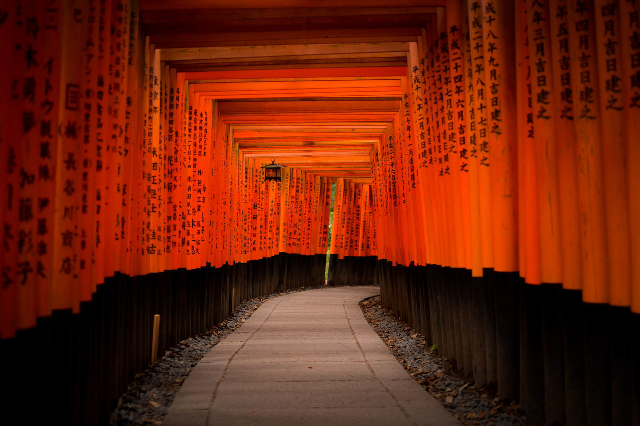 Architectural Column Architecture Built Structure Day In A Row Indoors  No People Orange Color Place Of Worship Religion Shrine Spirituality Sunset The Way Forward Travel Travel Destinations 稲荷神社