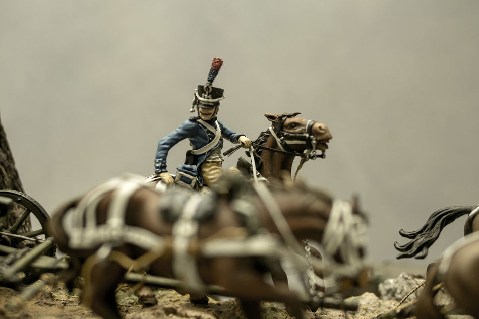 Army Cavalry Close-up Macro Napoleonic Plastic Shallow Depth Of Field Soldier Tourism Toy Soldiers