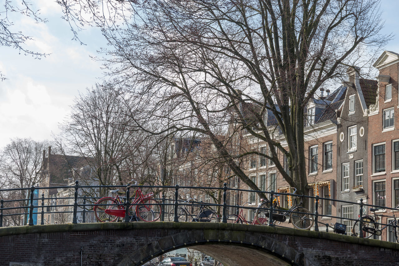 Architecture Tree City Sky Built Structure No People Building Exterior Outdoors Day Bridge - Man Made Structure Cityscape Amsterdam Canal Amsterdamcity Amsterdam