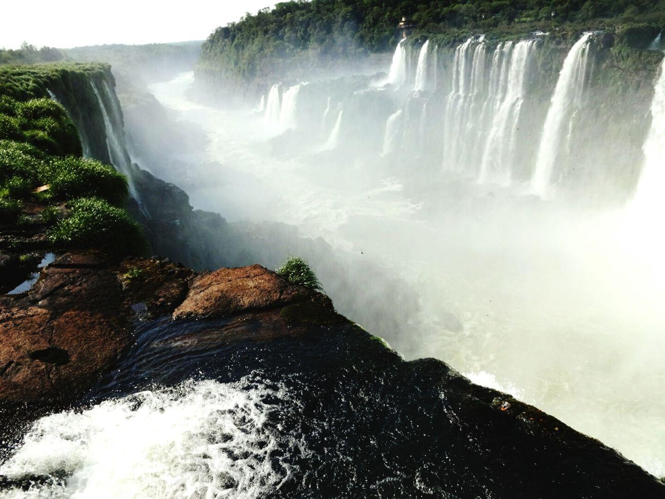 Puerto Iguazu Nature Cataratasdeliguazú