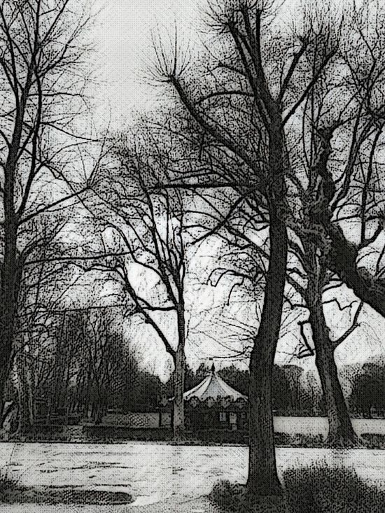 Tree Bare Tree No People Outdoors Tranquility Day Strano,molto Strano Stranoselfie Strano Feel The Journey, Capture The Moment Samsung Galaxy S7 Edge Disegnare Con La Luce Disegno Nature Samsungphotography Tree And Sky EyeEm Best Shots Artistic Freedom Artistic Photo Arte Artistic Expression Artistic Photography