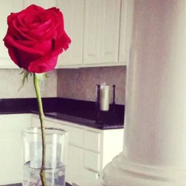 By Far Am I A Self-Centered Dude... So This Single ROSE Is For My TRUE InstaFAM... Y'all Endured My Shit Tonight After ALL The MTV VMA Posts Without Given Up On My Wild Ass... I LOVE Y'all 4 That. Real Talk! Good Night & Sleep Well, Because 2morrow Is ManicMondayMadness = Peaceandlove , Ya' Boi Cin