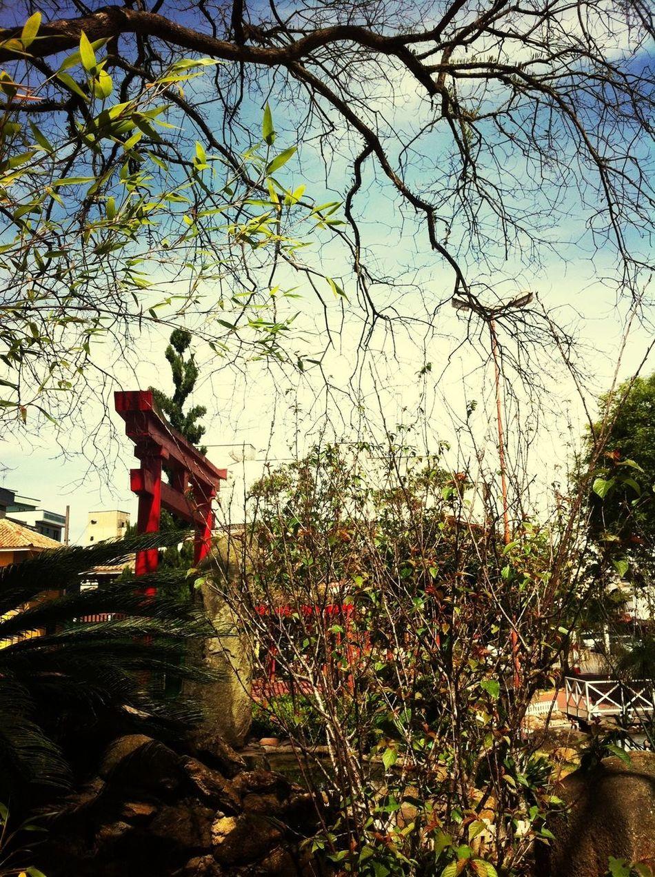 j Jardim Japonês