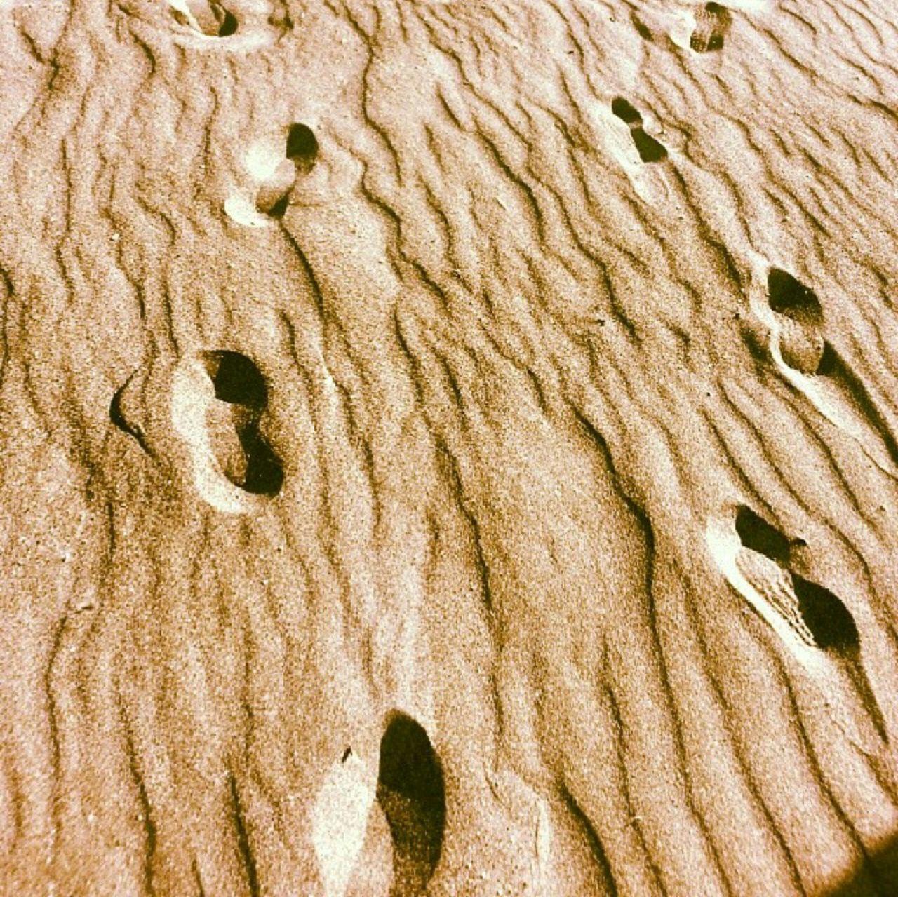 Sand Beach Impronte Spiaggia Oro