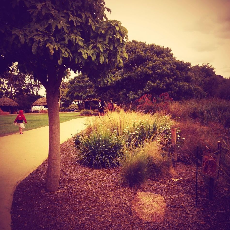 little red riding hood Mob Fiction Lomography Landscape_Collection