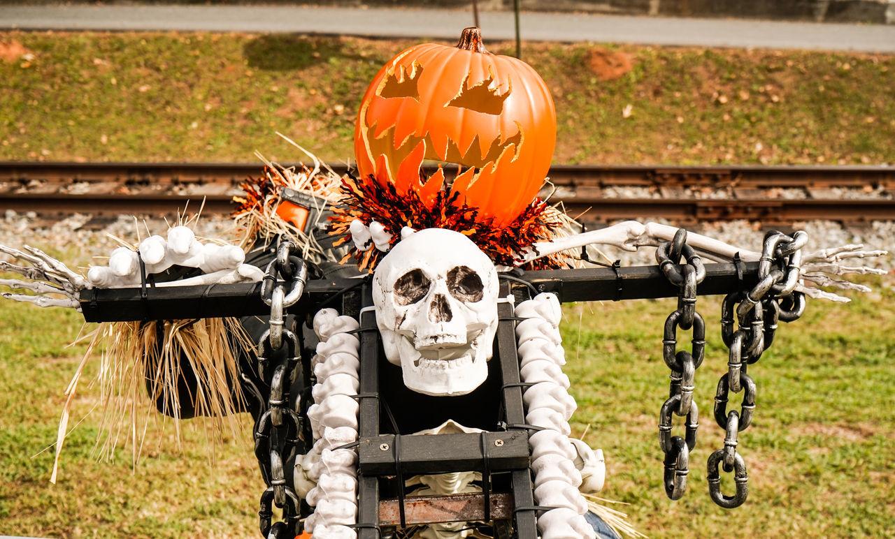 human representation, outdoors, day, anthropomorphic face, pumpkin, scarecrow, no people, halloween, jack o lantern, close-up