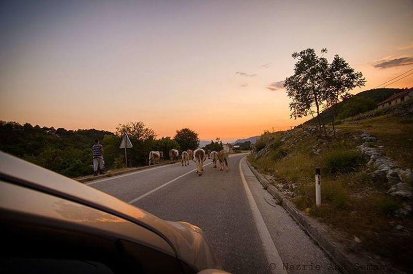 Driving from Montenegro to Croatia Travel Montenegro Croatia