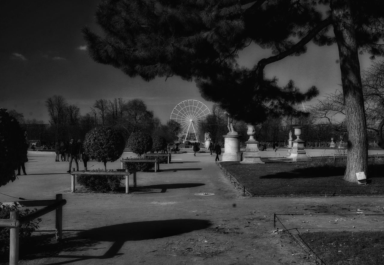 Сад Тюильри Paris, France  The Changing City Paris France франция Париж Capture The Moment I Love My City EyeEm Showcase: February сад тюильри