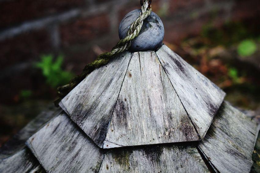 Backyard Outdoors Close-up Birdhouse 🌺 Garden 🌿☘️🌲🍃 NIKON D5300 EyeEm Selects