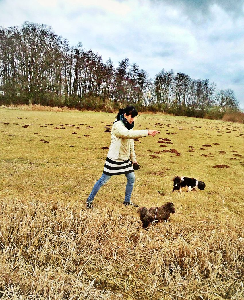 Leisure Activity Leisure Style Young Woman Playing With Doggies Dogs Cold Days Grassland Trees Bare Trees Domestic Animals Two Little Cheerful Doggies Dwarf Poodles Pets Of Eyeem Togetherness Fun With Dogs Nature Beliebte Fotos Kinzig Auen Langenselbold Germany🇩🇪