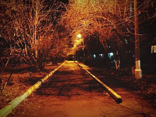 Night No People Autumn Krasnoyarsk City Street Illuminated
