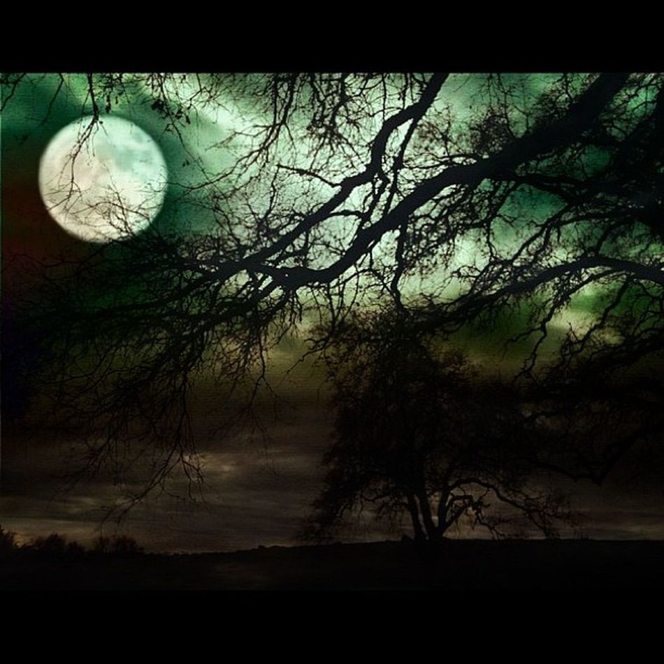 A collaboration featuring a blend of two images by the talented meishkamooshka with my edits! Thank you, Meisha for this awesome opportunity! <3 Nightmare Jj_collab Dream Instadark Branches Dark Edit Horizon Collaboration Moody Nature Instamood Sky Collab Alone Instagood Landscape Igaddict Creepy Instahub Trees Rsa_dark Moon Masters_of_darkness Fullmoon Pf_arts
