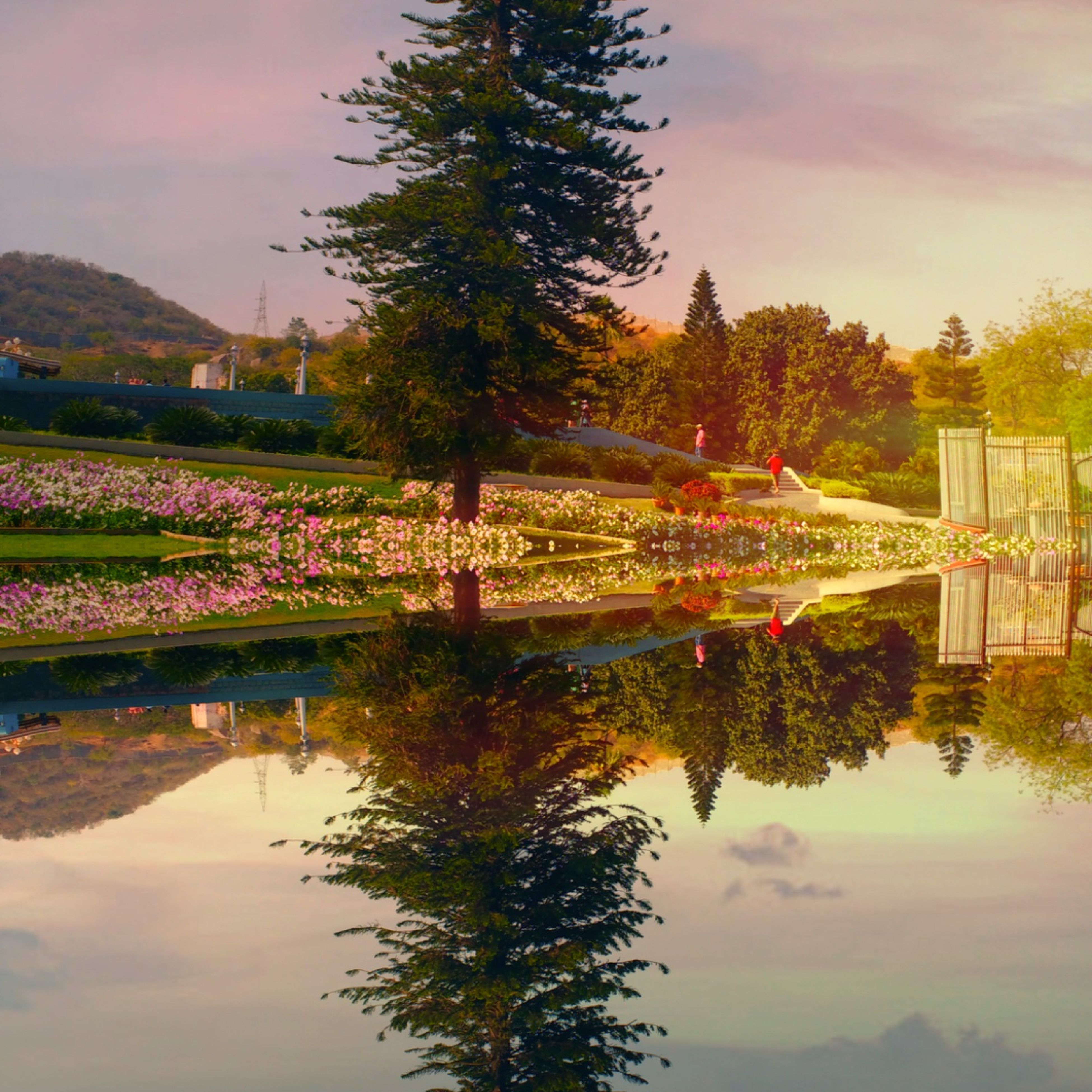 reflection, water, waterfront, sky, tree, nature, lake, sunset, no people, beauty in nature, scenics, flower, multi colored, illuminated, celebration, outdoors, christmas tree, architecture, day