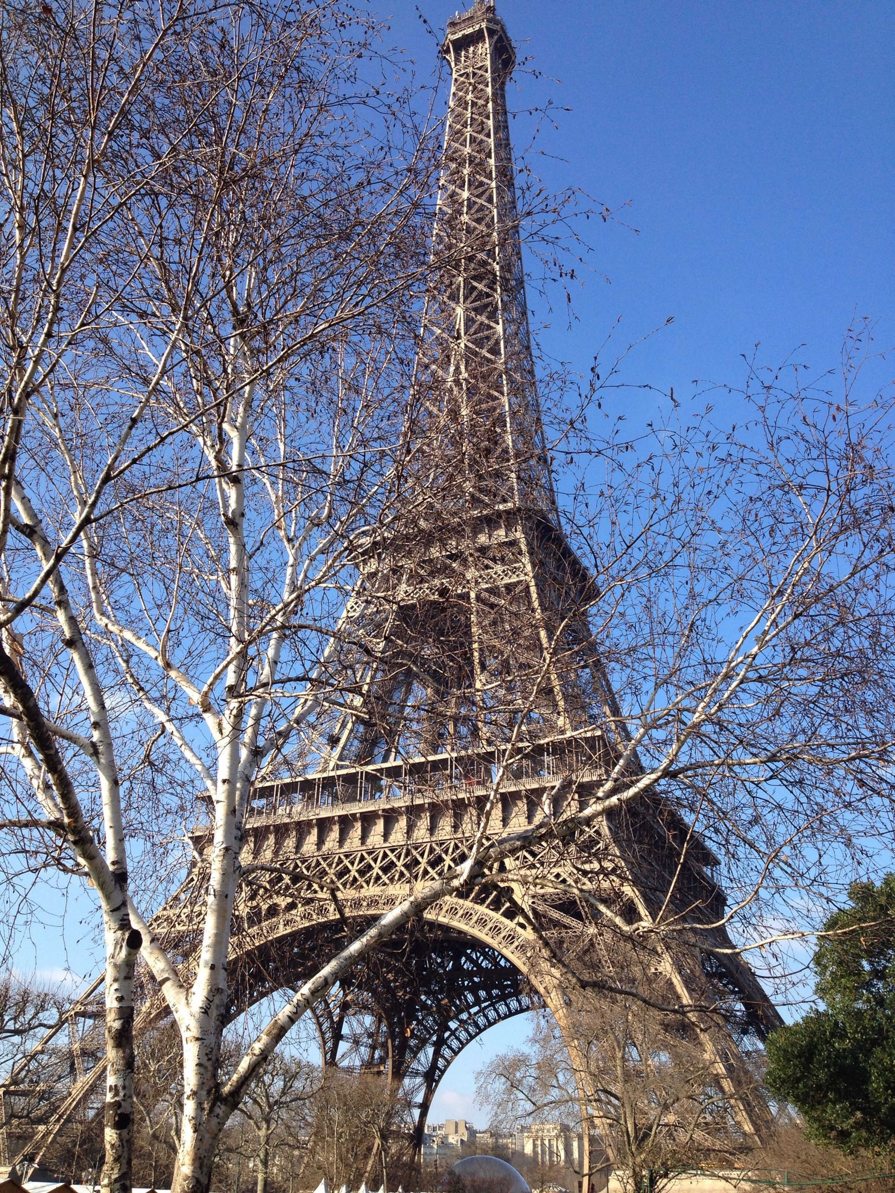 architecture, built structure, low angle view, famous place, eiffel tower, tree, international landmark, tower, travel destinations, history, tourism, culture, capital cities, travel, building exterior, tall - high, bare tree, sky, architectural feature, religion
