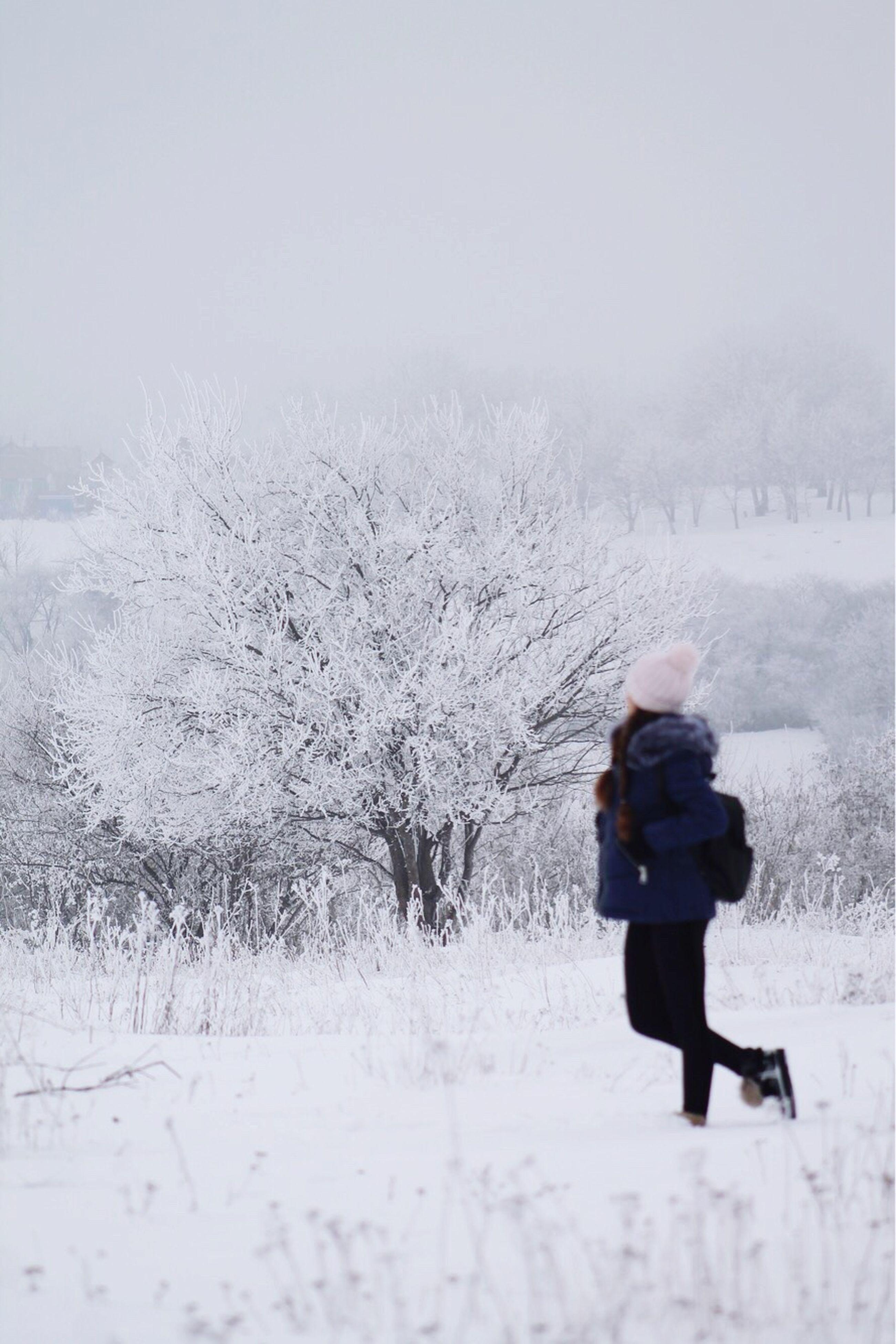 winter, snow, cold temperature, weather, full length, nature, one person, beauty in nature, warm clothing, rear view, leisure activity, lifestyles, day, outdoors, women, snowing, tree, scenics, vacations, one woman only, people, adult, adults only