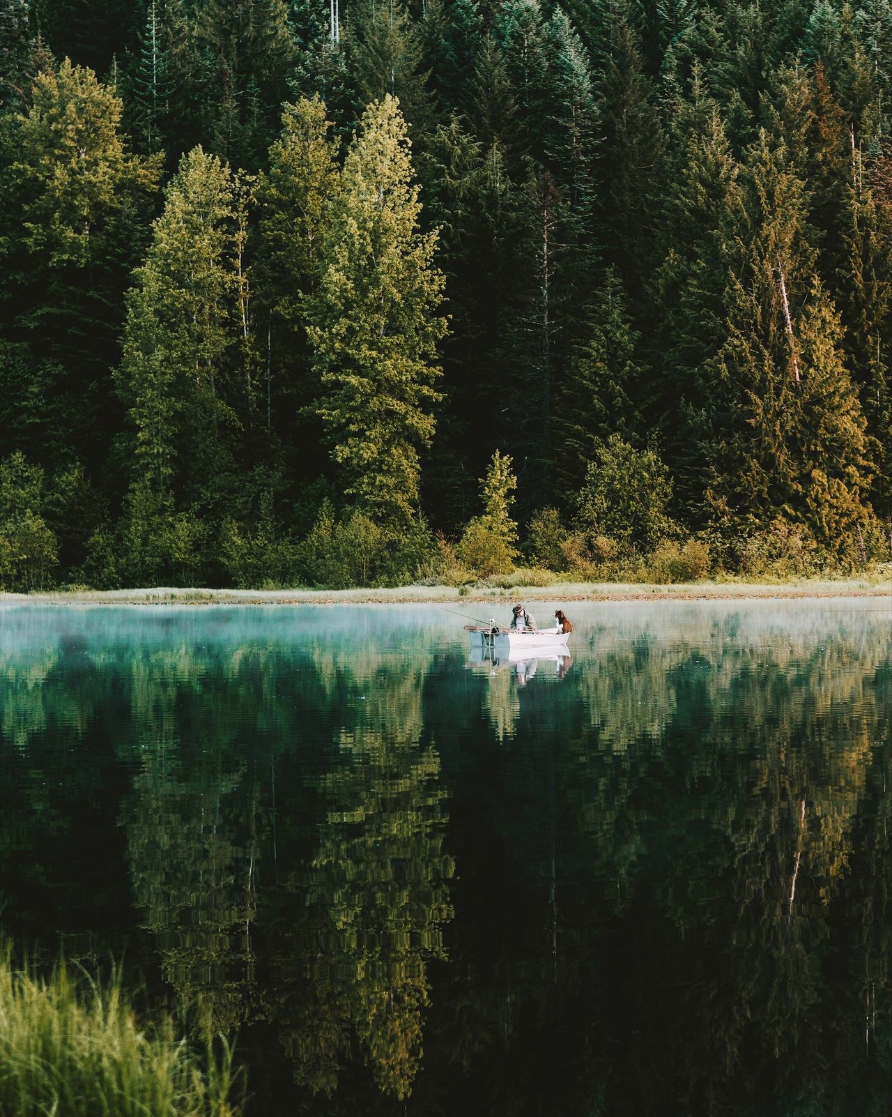 Best friend. Long Goodbye Tree Nature Forest Water Lake Beauty In Nature Nautical Vessel Tranquility Scenics Tranquil Scene Reflection Lush Foliage Day Transportation Mode Of Transport Growth Outdoors Plant No People Leaf TCPM
