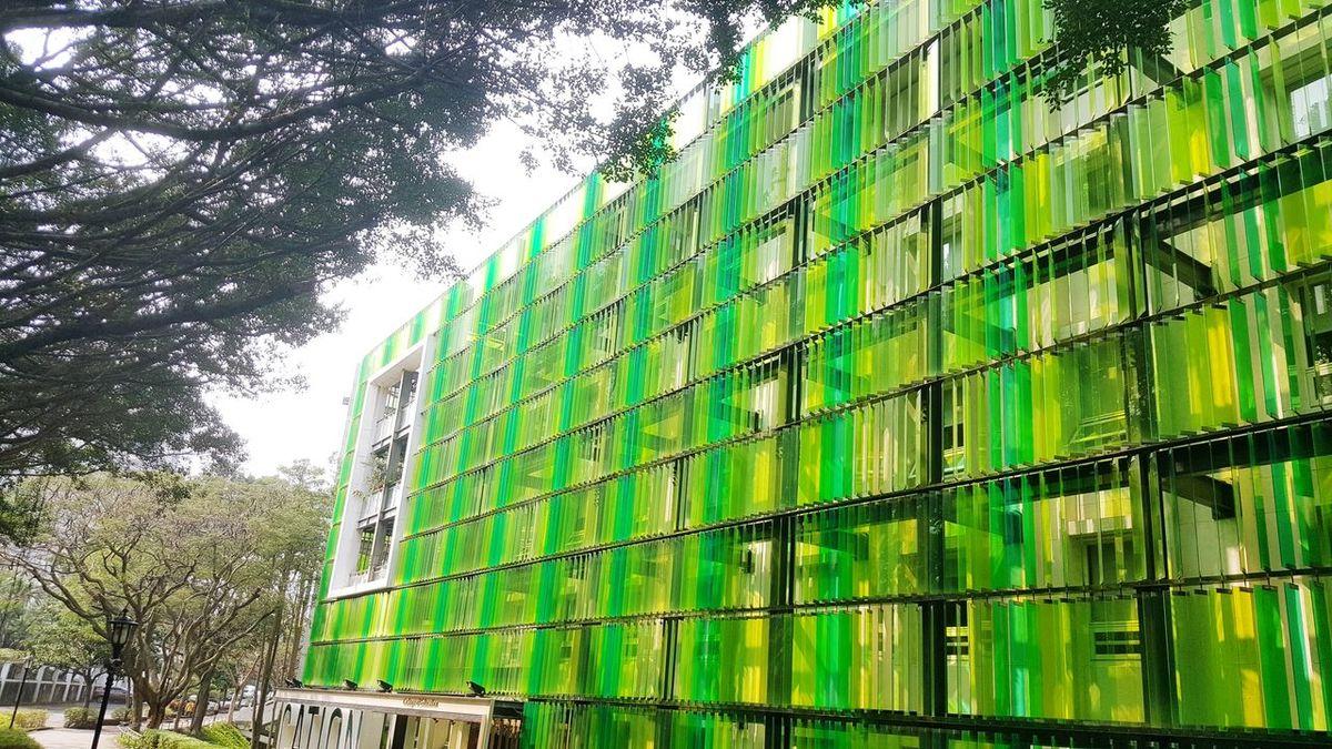Neon Life Tamsui Taiwan Tku Green Green Color Green Buildings