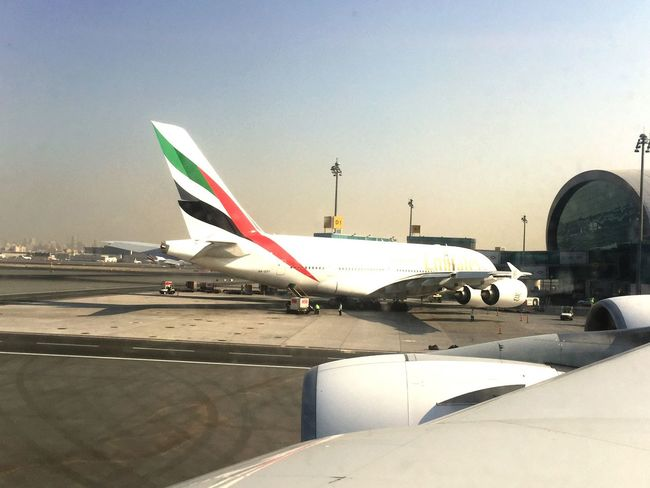 Emirates Dubai Emiratesairline Airline Airplane Flight International Airport Dubai International Airport DXB Aircraft Wing Travel Airport Flying Multi Colored My Dubai United Arab Emirates Dubai❤ Holiday In The Airplane Transportation Sky No People Airbus A380 Airbus A380