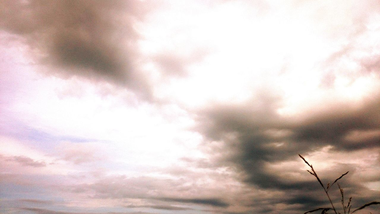sky, nature, beauty in nature, low angle view, cloud - sky, tranquility, outdoors, tranquil scene, no people, scenics, day