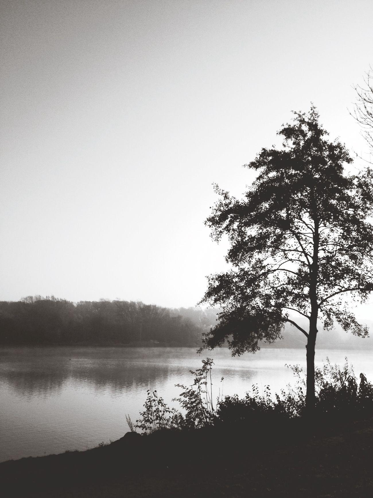 EyeEmBestEdits AMPt_community Blackandwhite Landscape_Collection